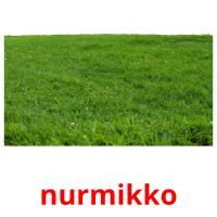 nurmikko picture flashcards