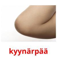 kyynärpää picture flashcards
