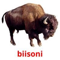 biisoni picture flashcards