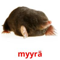 myyrä picture flashcards