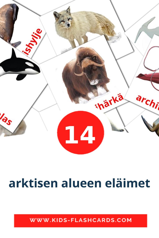 14 arktisen alueen eläimet Picture Cards for Kindergarden in finnish