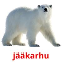 jääkarhu picture flashcards