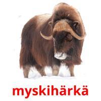 myskihärkä picture flashcards
