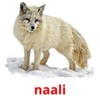 naali picture flashcards