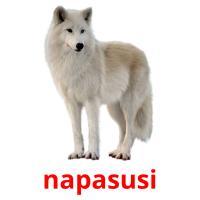 napasusi picture flashcards