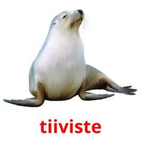 tiiviste picture flashcards