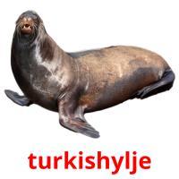 turkishylje picture flashcards