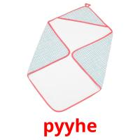 pyyhe picture flashcards