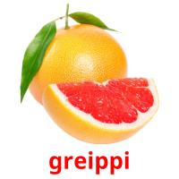 greippi picture flashcards