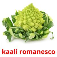 kaali romanesco picture flashcards