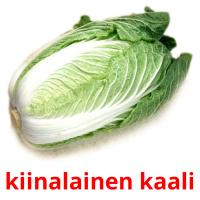 kiinalainen kaali picture flashcards