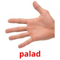 palad picture flashcards