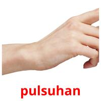pulsuhan picture flashcards