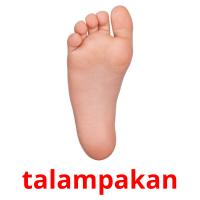 talampakan picture flashcards