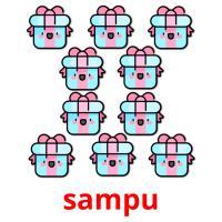 sampu picture flashcards