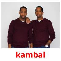kambal picture flashcards