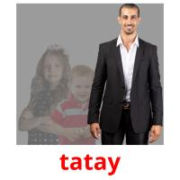 tatay picture flashcards