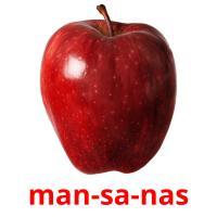 man-sa-nas picture flashcards