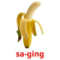 sa-ging picture flashcards