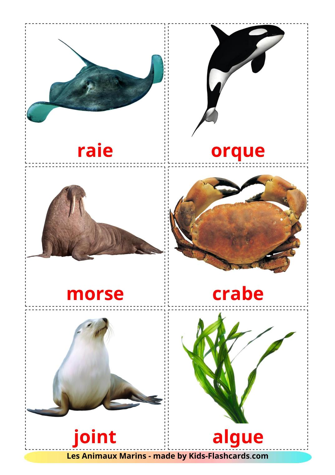 Sea animals - 29 Free Printable french Flashcards