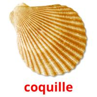 coquille picture flashcards
