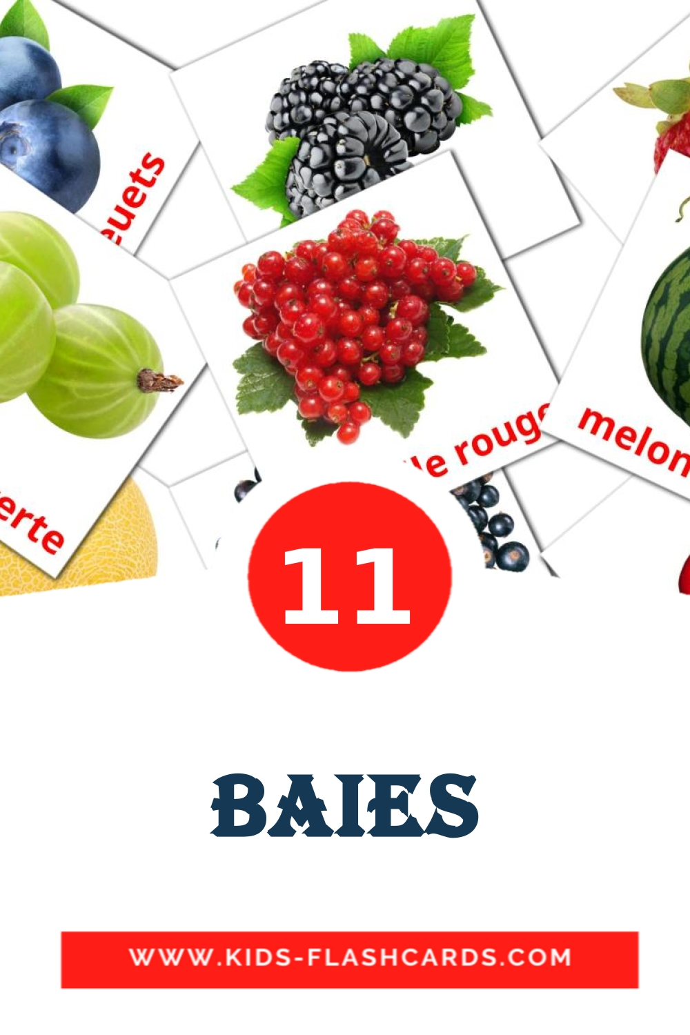 11 Baies Picture Cards for Kindergarden in french