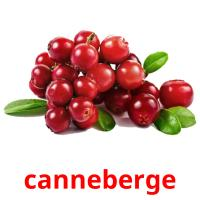 canneberge picture flashcards