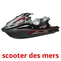 scooter des mers picture flashcards