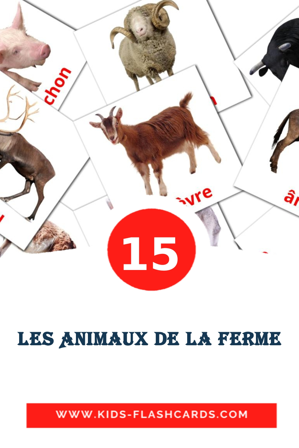 15 Animaux de ferme Picture Cards for Kindergarden in french