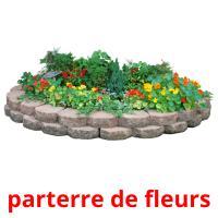 parterre de fleurs picture flashcards