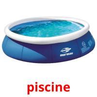piscine picture flashcards