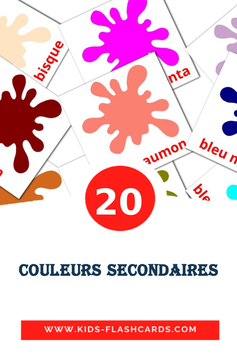 20 Couleurs secondaires Picture Cards for Kindergarden in french
