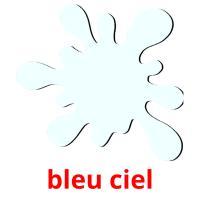 bleu ciel picture flashcards