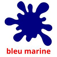 bleu marine picture flashcards