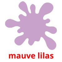 mauve lilas picture flashcards