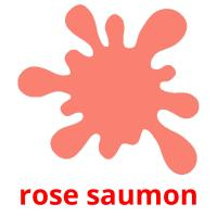 rose saumon picture flashcards