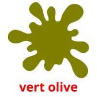 vert olive picture flashcards
