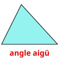 angle aigü picture flashcards