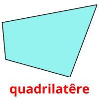 quadrilatêre picture flashcards