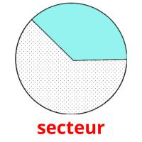 secteur picture flashcards