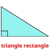 triangle rectangle picture flashcards