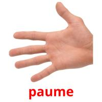 paume picture flashcards