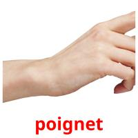 poignet picture flashcards