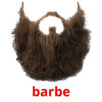 barbe picture flashcards