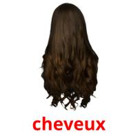 cheveux picture flashcards