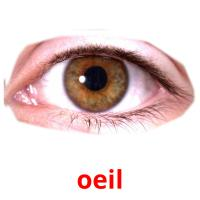 oeil picture flashcards