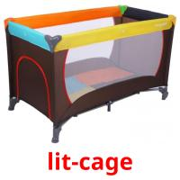 lit-cage picture flashcards