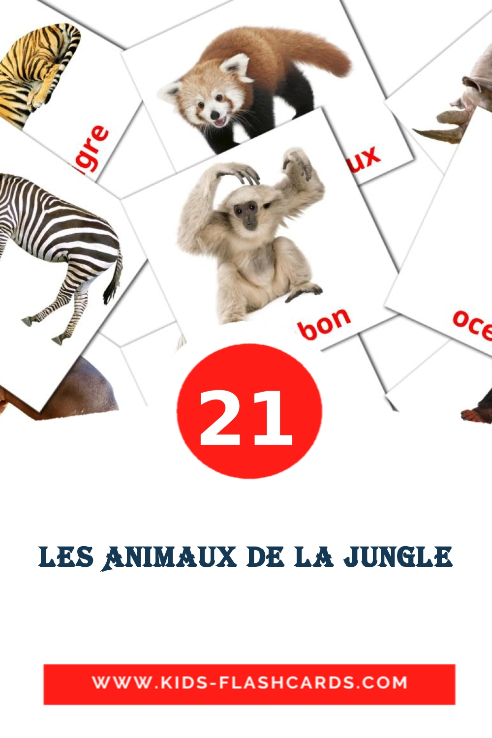 21 Animaux de la jungle Picture Cards for Kindergarden in french