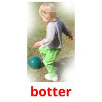 botter picture flashcards