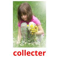 collecter picture flashcards